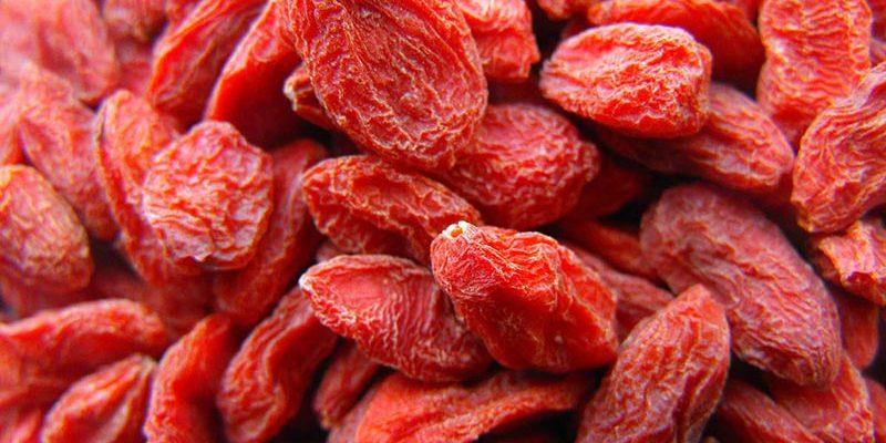 Torkad Frukt Grossist Gojibär